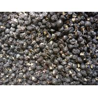 Buy cheap Amorberry Organic Freeze dried black wolfberry, Freeze black goji berry with big size from manufacturer with cheap price from wholesalers