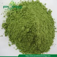 Buy cheap Bulk supply Organic wheatgrass powder with best price from wholesalers