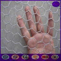 Buy cheap High quality Chicken hexagonal wire mesh , chicken wire netting for bird cages from wholesalers