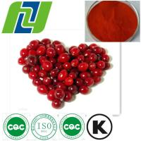 Buy cheap 25% PAC Cranberry Extract powder from wholesalers