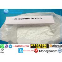 Buy cheap 99% Boldenone Steroids Muscle Gain White Powder Boldenone Acetate for Bodybuilding from wholesalers