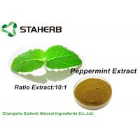 Buy cheap Pure Nature Organic Peppermint Leaf Extract Brown Powder 10/1 Ratio By TLC from wholesalers