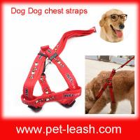 Buy cheap Dogs chest straps Pet chest straps and traction on the rope QT-0060 from wholesalers