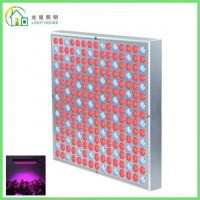 Buy cheap Red LED Indoor Garden Lights / Energy Efficient LED Flowering Grow Lights , AC 85~265V product