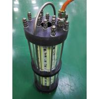 Buy cheap Hydraulic Pressure Resistant Green Led Fishing Lights For Fish Hatchery from wholesalers