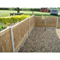 Buy cheap split reed fence from wholesalers