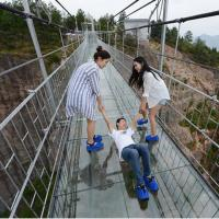 Buy cheap Thriking Glass 12mm clear tempered laminated glass price for skywalk,glass bridge,Glass Walkway Path from wholesalers