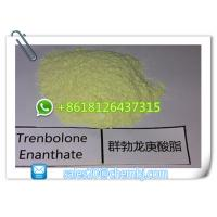 Buy cheap High Purity Muscle Building Steroids Trenbolone Enanthate CAS 10161-33-8 from wholesalers