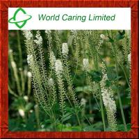 Buy cheap Black Cohosh Extract (Triterpene Glycosides) HPLC for women's health from wholesalers