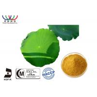 Buy cheap Weight Loss Pure Herbal Extracts  , Lotus Leaf Extract Powder For Flavonoids Herbal Medicine from wholesalers