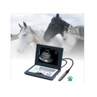 Buy cheap Laptop Veterinary Portable Ultrasound Machine Full Digital Ultrasonic Diagnostic System from wholesalers
