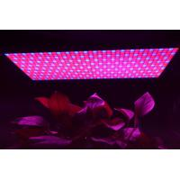 Buy cheap 120W Led Hydroponic Grow Lights IP65 , Led Indoor Garden Lights 300*600mm from wholesalers