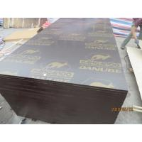 Buy cheap 'KANGAROO' BRAND FILM FACED PLYWOOD,High Quality film faced plywood , concrete formwork plywood , poplar core plywood from wholesalers