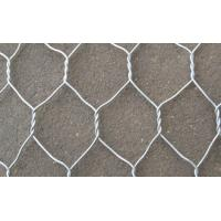 Buy cheap 1/2 3/4 Inch Galvanized Hexagonal Wire Mesh Long Life Expectancy.For Residential Protection from wholesalers