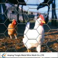 Buy cheap Chicken Wire Netting| 25mm Opening Hole Wire Mesh Customized Size for Poultry House from wholesalers