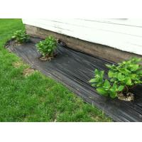 Buy cheap weed barrier fabric under gravel Landscape Fabric Weed Control Membrane from wholesalers