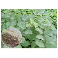 Buy cheap Trans Resveratrol 99% Giant Knotweed Extract White Fine Powder With HPLC Test Method from wholesalers