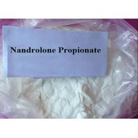 Medicine Grade Testosterone Steroid Nandrolone Propionate High Purity  For Mass Gain