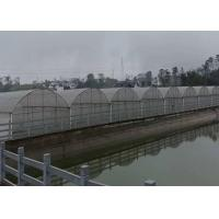 Buy cheap Agricultural Plastic Poly Film Greenhouse Customized Length With Lock And Wire from wholesalers