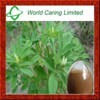 Buy cheap High Quality Fenugreek Extract for blood glucose control product