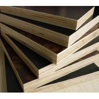 Mm construction grade film faced plywood shuttering