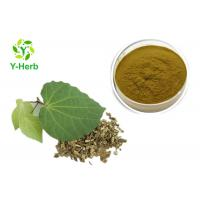 Buy cheap Medicinal Kava Kavalactone Extract Powder 30% 70% Pure Piper Methysticum Extract from wholesalers