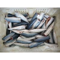 Buy cheap frozen mackerel from wholesalers