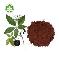 Buy cheap high quality siberian ginseng root extract powder for sale from wholesalers