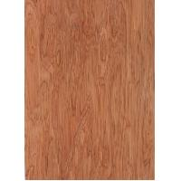Buy cheap Sliced Cut Natural Bintangor Wood Veneer Sheet from wholesalers