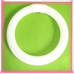 Circular Fluorescent Lamps Quality Circular Fluorescent