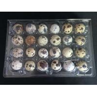 Buy cheap Disposable plastic quail egg tray 24 holes quail egg tray plastic egg tray for product