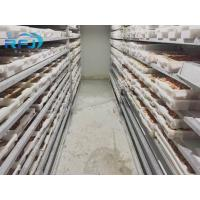Buy cheap Fresh Tuna Small Tunnel Plate Blast Walk In Freezer Industrial Seafood Iqf Cold Contact Panel from wholesalers