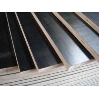 Buy cheap Poplar Black and Brown Film Faced Plywood Shuttering Marine Plywood from wholesalers