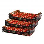 Buy cheap Biodegradable Fruit Box Carton Box  Fruit  Vegetable Apple Box Packaging from wholesalers
