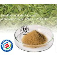 Buy cheap High Quantity And Purity Light Yellow Baicalin Cutellaria Root Extract CAS:21967-41-9 from wholesalers