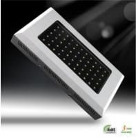 Buy cheap 55x3w Led Aquarium Light from wholesalers
