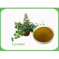 Buy cheap cosmetic use material, anti-wrinkle, Chinese Ivy Extract Hederacosides 10% Manufacturer from wholesalers