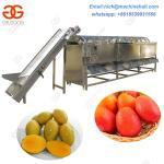Buy cheap Hot Sale Mangoes Sorting Machine/Stainless Steel Mango Sorting Machine/Automatic Mango Sorting Machine from wholesalers