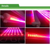 LED Grow Lights T8,18w LED Growing Tube Light,LED Grow Light Strips