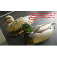 Buy cheap XPE Foam material foldable turkey decoy for hunting from wholesalers