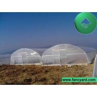 Buy cheap Poly Film Greenhouse,Tomato Greenhouse,Flower Greenhouse from wholesalers