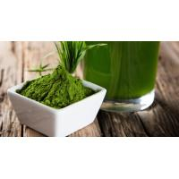 Buy cheap Hot Sale Organic Barley Grass Juice Powder from wholesalers