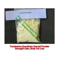 Buy cheap Raw Steroid Powders Trenbolone Enanthate 99% Muscle Growth Steroids For Bodybuilding from wholesalers