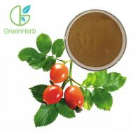 Buy cheap Fruit Extract Powder Herbal Extract Rose Hips Extract Powder 5% VC from wholesalers