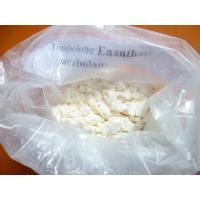 China Pharmaceutical Trenbolone Enanthate 10161-33-8 Muscle Growth Steroids for Men Bodybuilder on sale