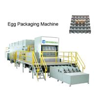Buy cheap high quality egg tray machine,rotary egg tray machine from wholesalers