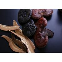 Buy cheap Reishi mushroom glossy ganoderma lucidum Ganoderme luisant chinese traditional medicine Ling zhi from wholesalers