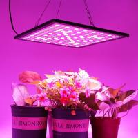 Buy cheap 300x300mm Indoor Full Spectrum LED Grow Lights Dimmable With 3000K-6500K CCT product