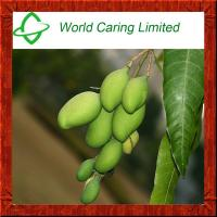 Buy cheap Weight Loss Ingredient African Mango seed extract 20:1 from wholesalers