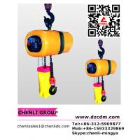 Buy cheap HHXG electric chain hoist (Hook suspension type)300kg,500kg,980kg, from wholesalers